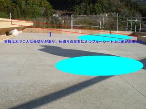 DSCF001.jpg